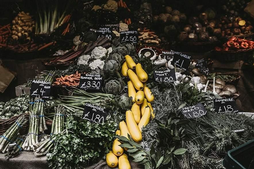 Food waste packaging, alternative packaging materials, meal kit packaging