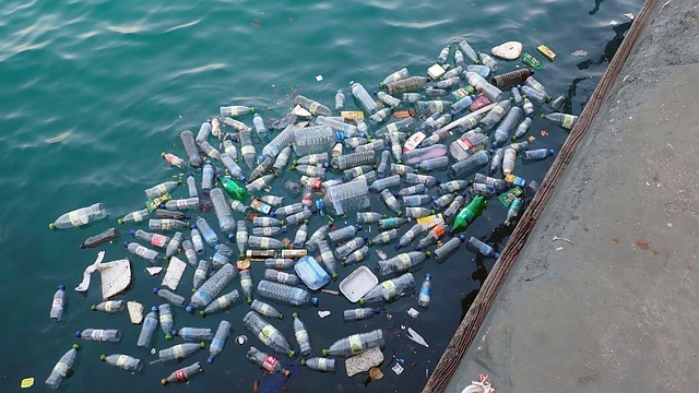 Westlake Chemical joins Alliance to End Plastic Waste