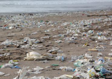 Plastic waste on the shoreline (Pixabay)