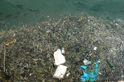Ontario commits to control plastic litter and waste