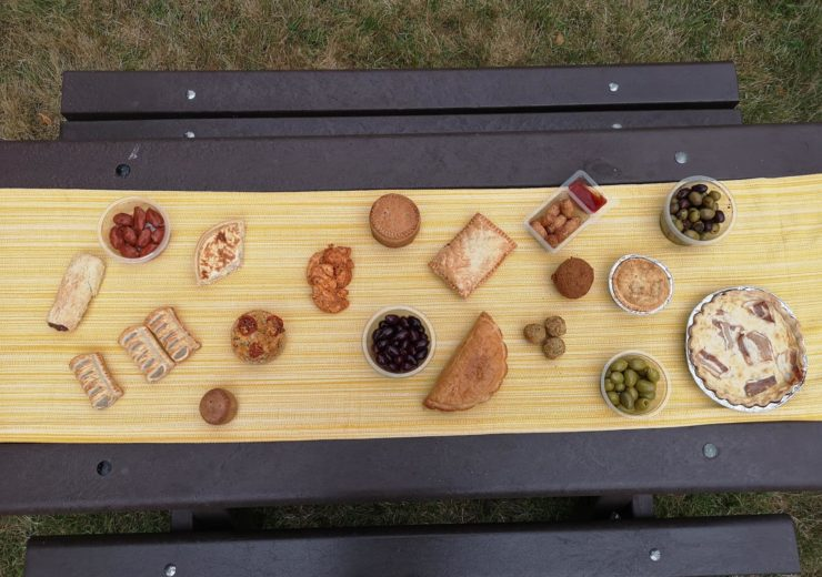 Picnic table with surveyed food (Credit Action on Salt)
