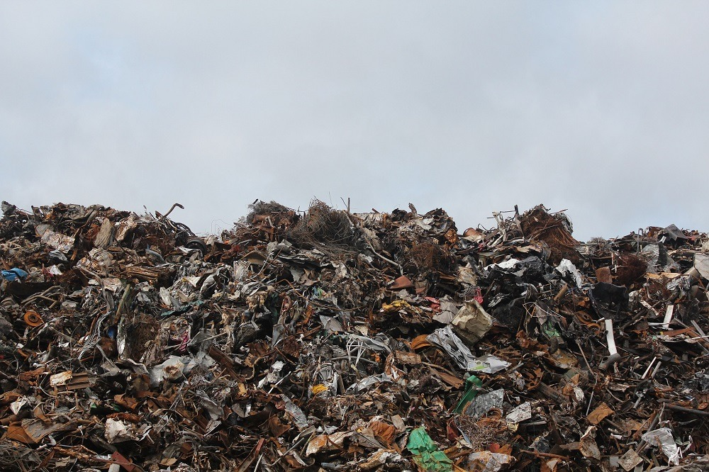 waste exports