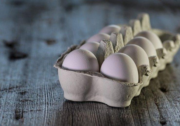 eggs-3183410_640