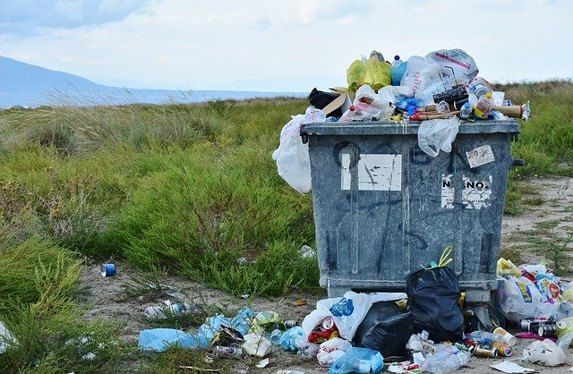 County Council proposed waste contract would cut carbon and save £2m each year. (Credit: RitaE from Pixabay.)