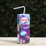 new_carton_with_paper_straw-1